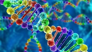Photo of معلومات عن تخصص البيولوجيا