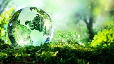 Photo of معلومات عن تخصص البيئة