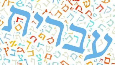 Photo of توجيهات للطلاب حول الملف التراكمي- תלקיט والامتحان الشفهي لهذا العام (اللغة العبرية)